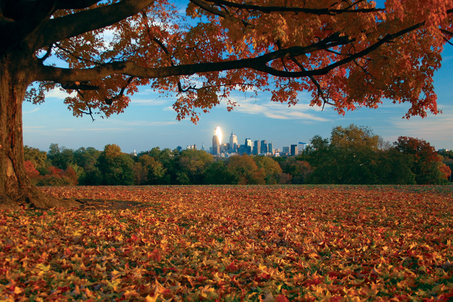 fallphilly