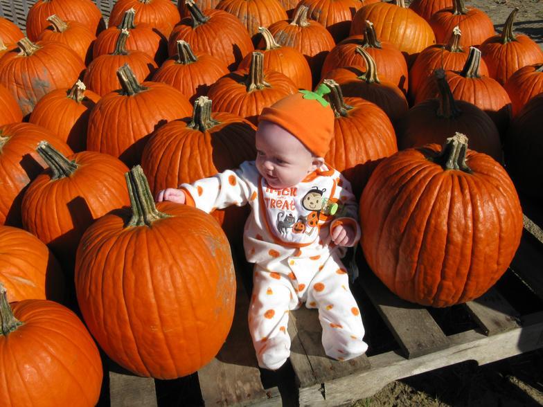 duffields-pumpkins