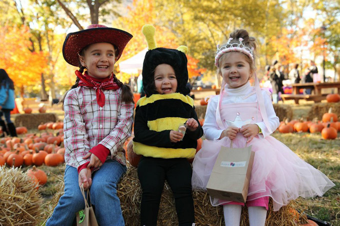 7 Awesome Kid Friendly Halloween Events in Philly - Wooder Ice