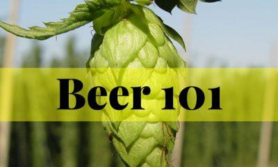 beer-101