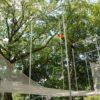 trapeze-school