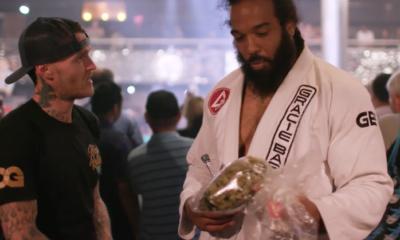 Stoned Fighting: Jiu-Jitsu Meets Cannabis