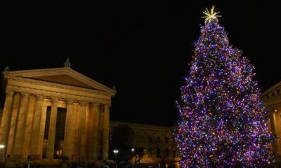 museum of art tree lighting