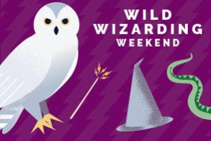 wild wizard weekend