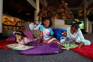 Night in the Museum: Myths and Legends
