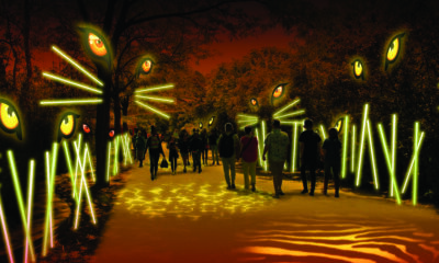Philadelphia zoo light show2