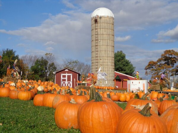 hecklers farm