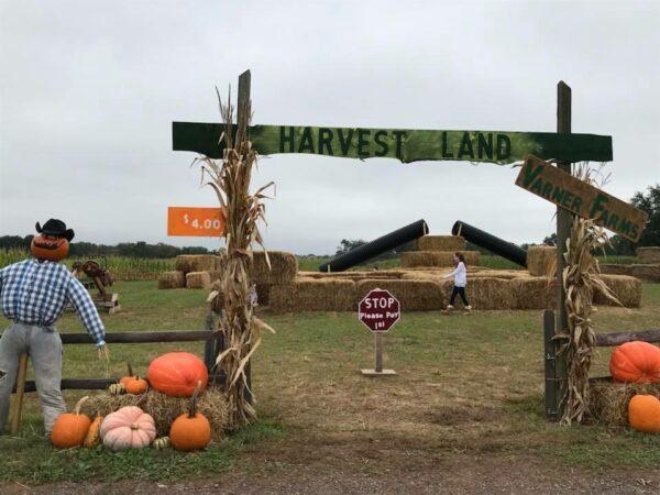 varner farms